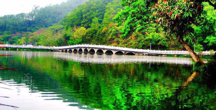 Shenzhen Mission Hills Golf Trip (5 Days 4 Nights 4 Golf Rounds)