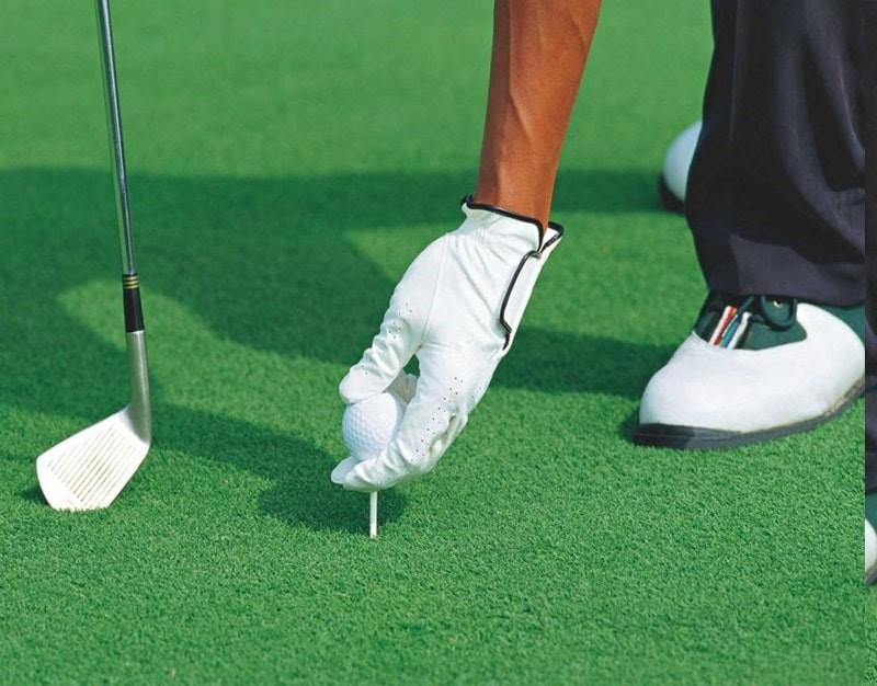 Có bao nhiêu loại sân golf